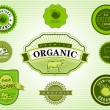 Set of Organic and Natural Food Labels — Stock Vector