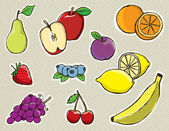 Hand Drawn Vector Fruit — Stock Vector