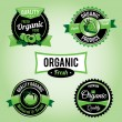 Organic Food Labels and Badges — Stock Vector
