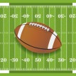 Stock Vector: Realistic Football on Textured Football Field