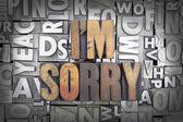 I'm Sorry — Stock Photo