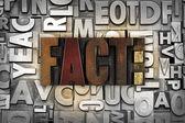 Fact — Stok fotoğraf