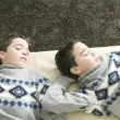 Stock Photo: Overhead view of two identical twin brothers sleeping on a sofa in the living room.