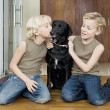 Two brothers at home kissing and hugging their pet dog. — Stock Photo #19824571