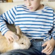 Young boy stroking his pet rabbit at home. - Stock Photo