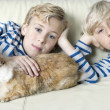 Two twin brothers stroking their pet rabbit on a sofa at home. — Stock Photo