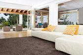 Wnętrze domu w dobrze zaprojektowanym salonie z widokiem na ogród. — Zdjęcie stockowe