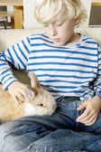 Young boy stroking his pet rabbit at home. — Foto Stock