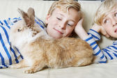 Two brothers and their rabbit pet lay together on a sofa at home, smiling. — Stock Photo