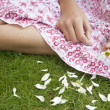 Overhead view of teenage girl pulling petals off a daisy flower. - 图库照片