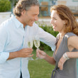 Mature couple toasting with champagne while in vignard's garden. - Stock Photo