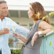 Mature couple toasting with champagne while in vignard garden's balcony. — Stock Photo
