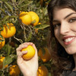 Young woman holding an orange on a tree. — Stock Photo