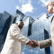 Two businessmen shaking hands — Stock Photo #21739023