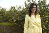 Portrait of an attractive young woman in an lemon grove. — Stock Photo