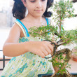 Stock Photo: Portrait of young girl trimming bonsai tree