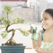 Portrait of a young girl watering a bonsai tree — Foto de Stock