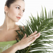Young attractive woman holding green palm leaves  — Stock Photo