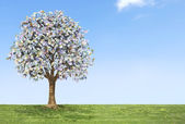 Euro money tree growing on green land with a blue sky. — Stock Photo