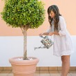 Woman watering a tree plant — Stock Photo