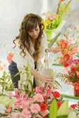 Woman choosing bunch of flowers — Stock Photo