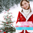 Girl celebrating Xmas — Stock Photo #42540315