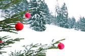 Christmas tree with barballs — Stock Photo