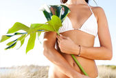 Woman holding  green leave — Stock Photo