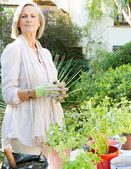Woman doing the gardening — Stock Photo