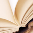 Blank pages of an open book — Stock Photo #48451303