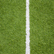 White line on soccer field grass — Photo #32040157