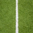 White line on soccer field grass — Stock Photo #32040157
