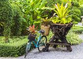 Rowerowy ozdobiony rośliny — Zdjęcie stockowe