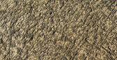 Old floor concrete texture — Zdjęcie stockowe