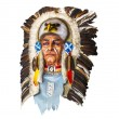 Wood carved indian chief head on white — Stock Photo #48169099