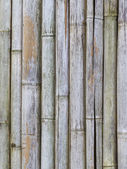 Closeup texture of old bamboo fence background — Stock Photo