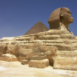 Pyramid and Sphinx at Giza — Stock Photo #20235635