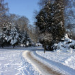 Snowy town park with way — Stock Photo