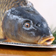 Carp on Christmas table — Stock Photo #20505761