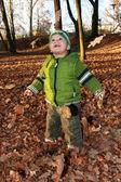 Joy from falling foliage — Stock Photo