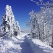Winter in Orlicke mountain — Stock Photo