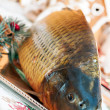 Carp and Christmas — Stock Photo #30665951