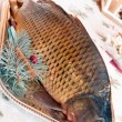 Carp and Christmas — Stock Photo