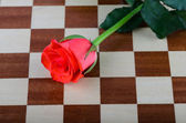 Rose lays on a chessboard — Stock Photo