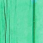 Green wood texture. — Stock Photo
