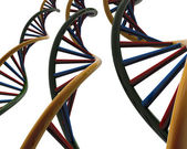 DNA. chromosome biology — Stock Photo
