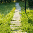 Stock Photo: Grass path