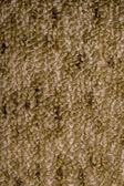 Cotton texture — Stock Photo