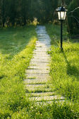 Grass path — Stock Photo