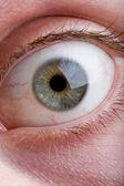 Macro of a blue eye — Stock Photo